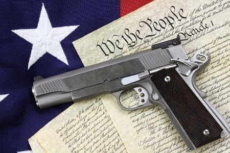 Domestic Violence Crimes: Can the Government take my guns?